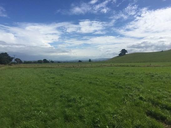 - Pinfold Road, Papatawa, Woodville - NZL (photo 5)