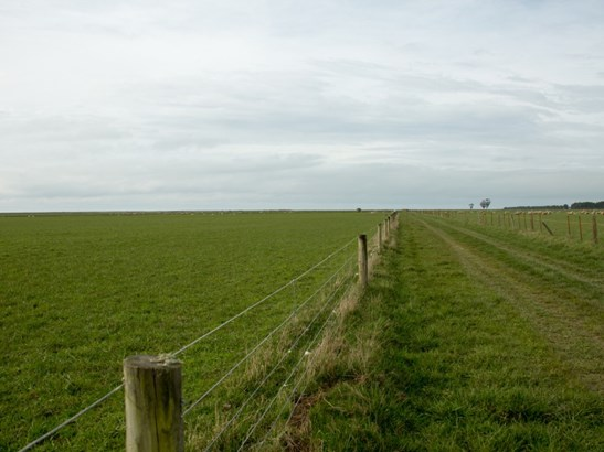 - Maori Road, Waimate - NZL (photo 2)