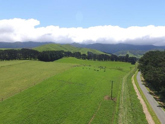 - Tamaki West Road, Dannevirke, Tararua - NZL (photo 1)