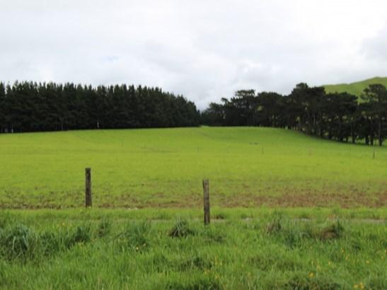 - Tamaki West Road, Dannevirke, Tararua - NZL (photo 4)