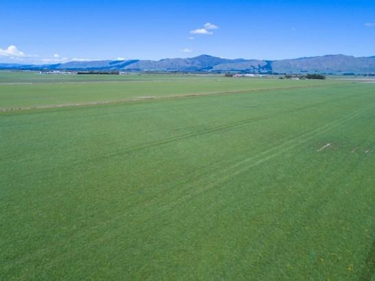 493 Opiki Road, Opiki, Manawatu - NZL (photo 2)