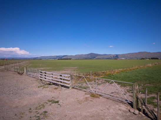 493 Opiki Road, Opiki, Manawatu - NZL (photo 5)