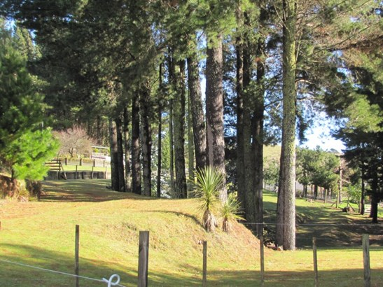 36 Ramsay Drive, Acacia Bay, Taupo - NZL (photo 4)