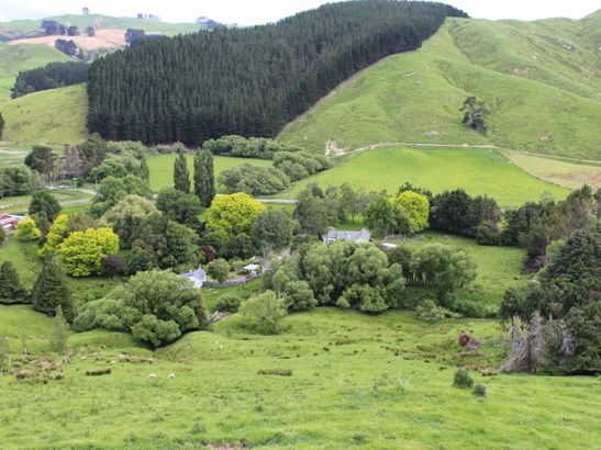 1177 Mangahei Road, Dannevirke, Tararua - NZL (photo 1)