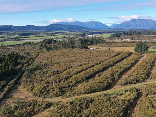 Lot 2 Dp 3140 Blue Spur Road, Blue Spur, Westland - NZL (photo 1)