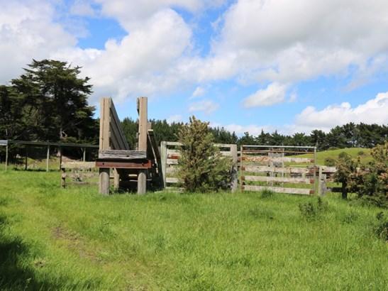 416 Foxton Shannon Road, Foxton, Horowhenua - NZL (photo 3)