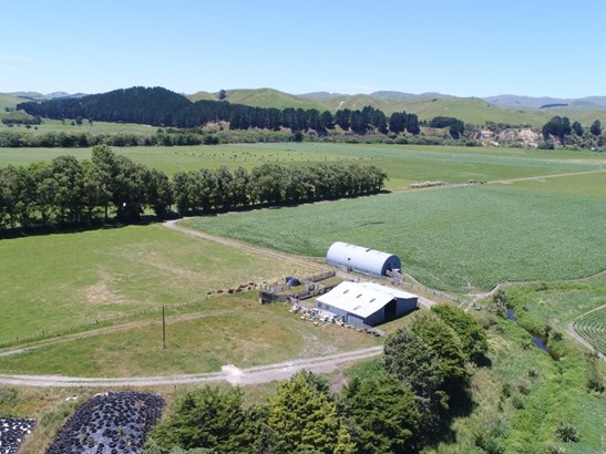 19 Jackson Road , Dannevirke, Tararua - NZL (photo 5)