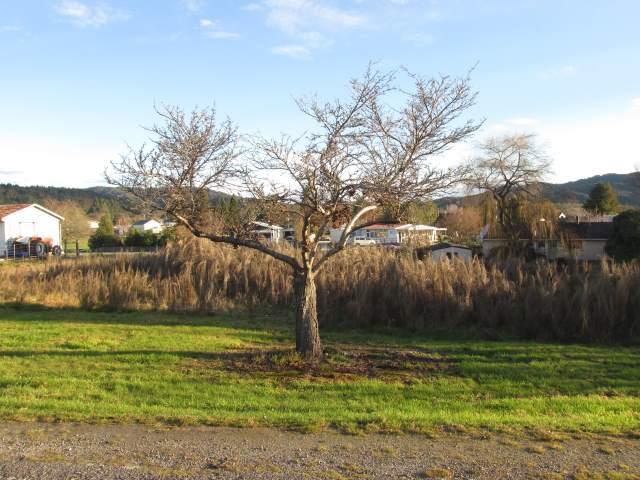 102/4 Buller Road, Reefton, Buller - NZL (photo 2)