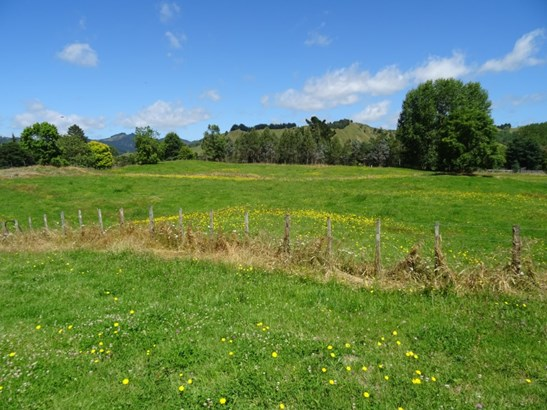 - Riviera Place, Taumarunui, Ruapehu - NZL (photo 2)