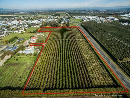 562 Ikanui Road, Frimley, Hastings - NZL (photo 3)