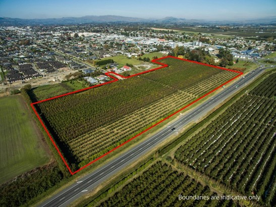 562 Ikanui Road, Frimley, Hastings - NZL (photo 4)