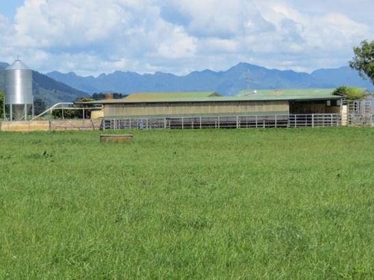 95 Bowler Road, Te Aroha, Matamata-piako - NZL (photo 4)