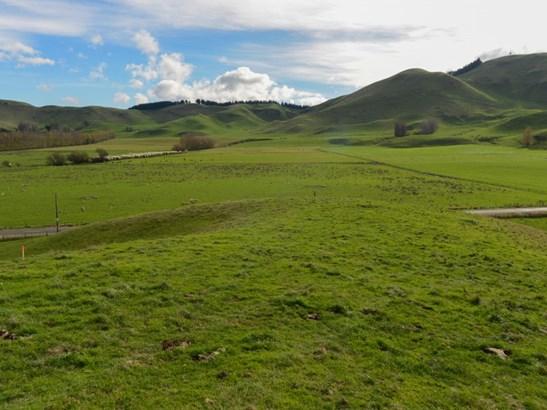 - Middle Road, Poukawa, Hastings - NZL (photo 2)