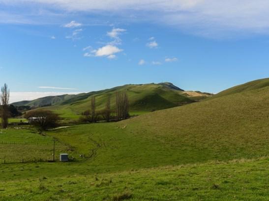 - Middle Road, Poukawa, Hastings - NZL (photo 3)