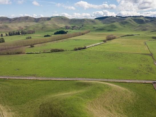 - Middle Road, Poukawa, Hastings - NZL (photo 5)