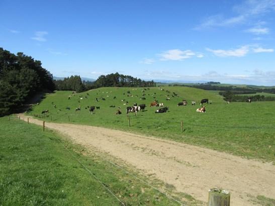 296 Gundries Road, Norsewood, Tararua - NZL (photo 1)