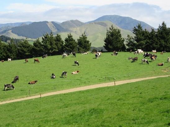 296 Gundries Road, Norsewood, Tararua - NZL (photo 2)