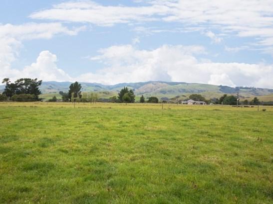 380 Pohangina Road, Ashhurst - NZL (photo 5)