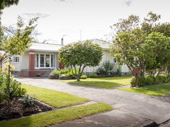 201 Caroline Place, Mayfair, Hastings - NZL (photo 1)