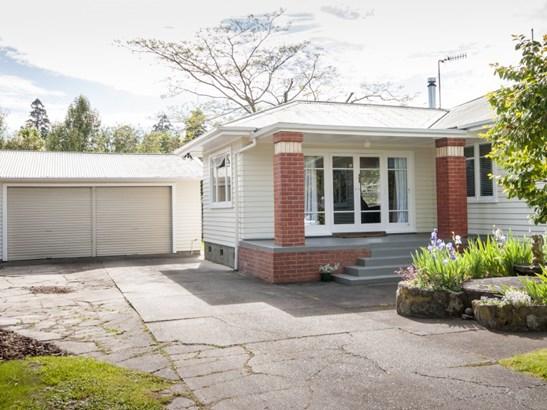 201 Caroline Place, Mayfair, Hastings - NZL (photo 5)