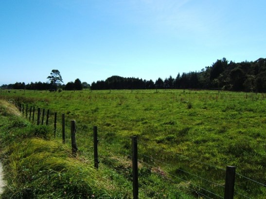 Lot 1 State Highway 67, Fairdown, Buller - NZL (photo 4)