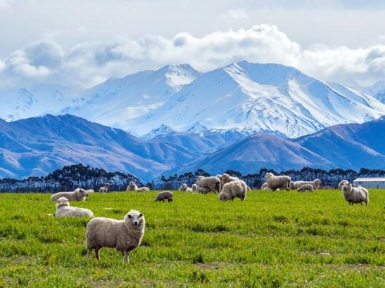 452 Methven Chertsey Road, Methven, Ashburton - NZL (photo 2)