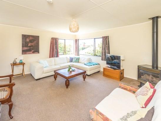 10 Sheffield Place, Springvale, Whanganui - NZL (photo 3)