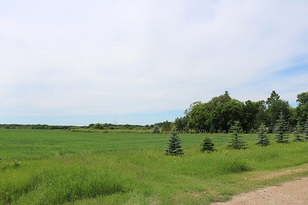 2 Willowdale Road, Rm Of Springfield, MB - CAN (photo 4)
