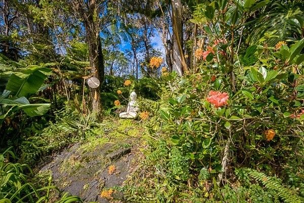 11-3861 12th St 1043, Volcano, HI - USA (photo 3)