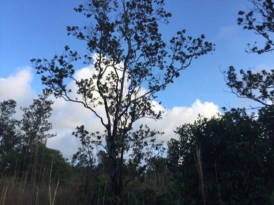 32, Volcano, HI - USA (photo 3)