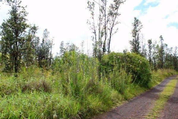 16-1872 Uau Rd (road 5) 3856, Mountain View, HI - USA (photo 5)