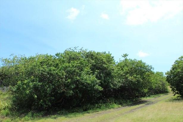 94-6569 Lewa Lani St. 25, Naalehu, HI - USA (photo 2)