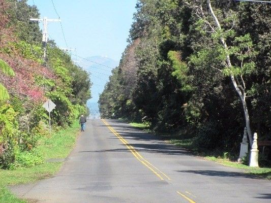 Wright Rd 12-b, Volcano, HI - USA (photo 4)