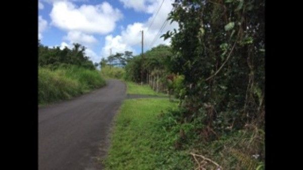 Lauone St 48, Pahoa, HI - USA (photo 2)