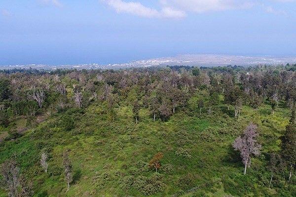 1301 Keopu Mauka Dr Lot 5 5, Holualoa, HI - USA (photo 2)