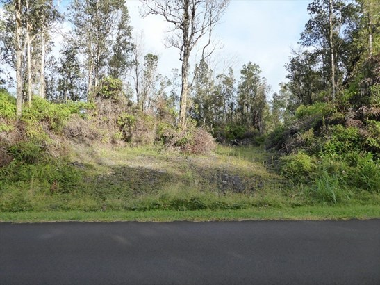 N Hookupu St 68, Pahoa, HI - USA (photo 4)