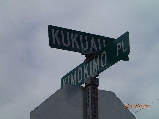 179 Kimokimo Place 427, Hilo, HI - USA (photo 4)