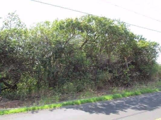 94-6661 Kamaoa Rd 534, Naalehu, HI - USA (photo 1)