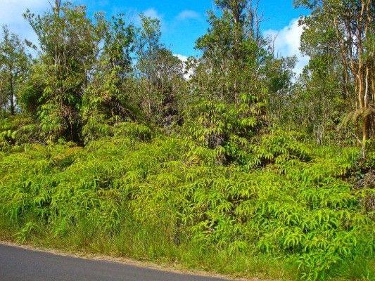 11-2785 Ala Kapena 44, Volcano, HI - USA (photo 1)