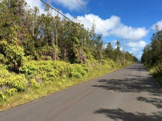 11-2785 Ala Kapena 44, Volcano, HI - USA (photo 5)