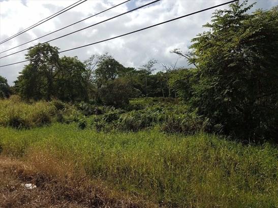 17-334 Volcano Road 10-d, Kurtistown, HI - USA (photo 4)