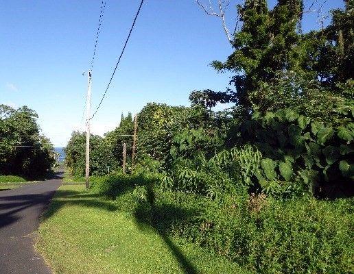 15-2802 S Papai St 1824, Pahoa, HI - USA (photo 2)