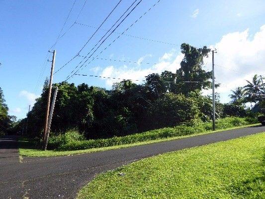15-2802 S Papai St 1824, Pahoa, HI - USA (photo 3)