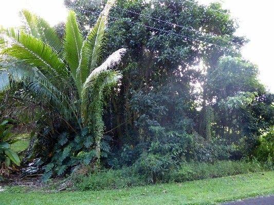 15-2802 S Papai St 1824, Pahoa, HI - USA (photo 5)