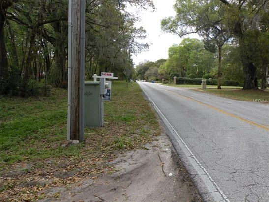 Residential Development - LUTZ, FL (photo 3)