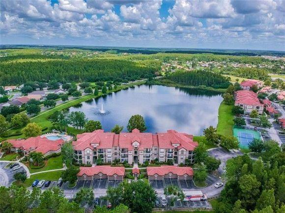 Condominium - LUTZ, FL