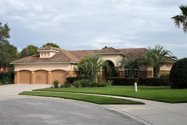 Single Family Residence, Contemporary - Spring Hill, FL (photo 1)