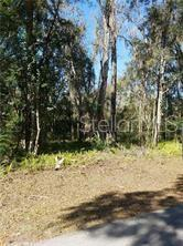 Land - BROOKSVILLE, FL