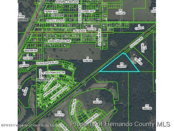 Acreage, Agricultural - Brooksville, FL