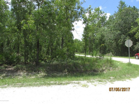 Single Family Residence - Weeki Wachee, FL (photo 1)